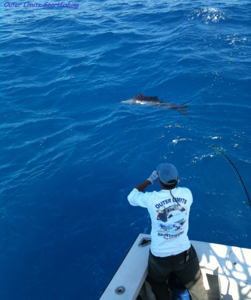 Cory leadering a Sailfish