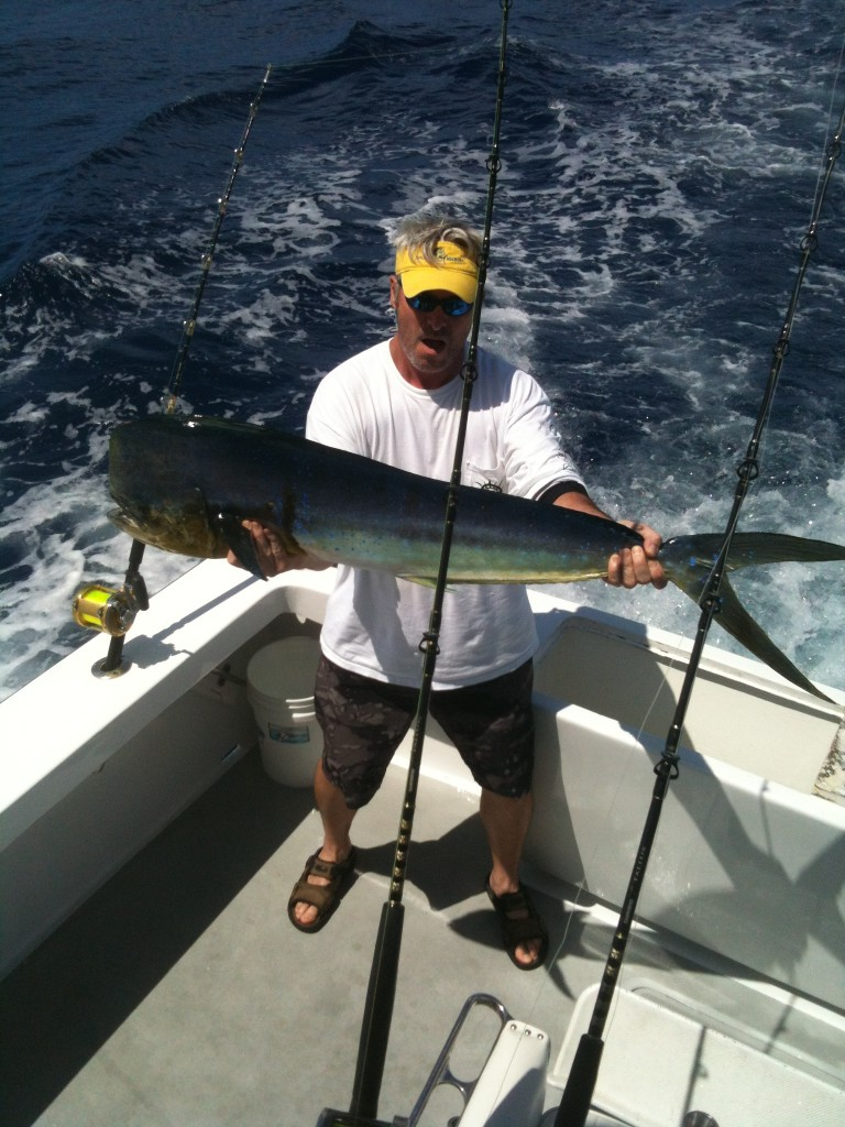 Bull Mahi caught in the fall