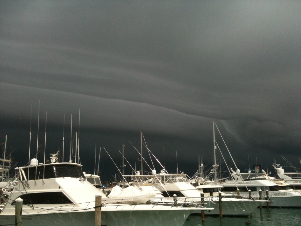 The Front Rolling In