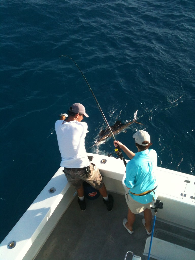 Lori's First Sailfish