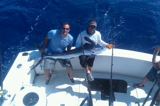 Mr.Z White Marlin