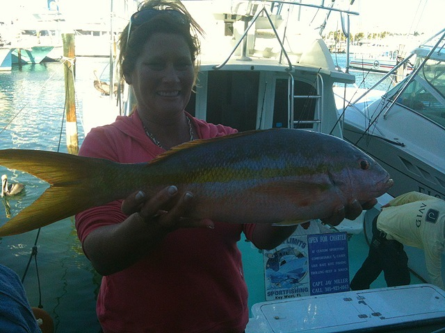 Sissy's Big Yellowtail Snapper