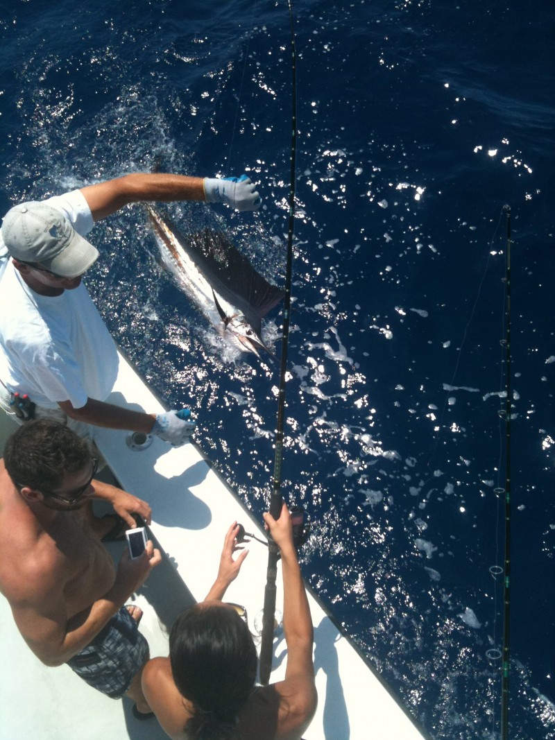 Rachael's Sailfish Trip